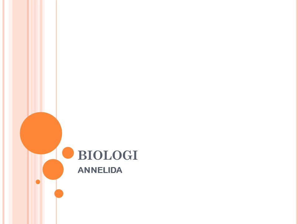 BIOLOGI ANNELIDA