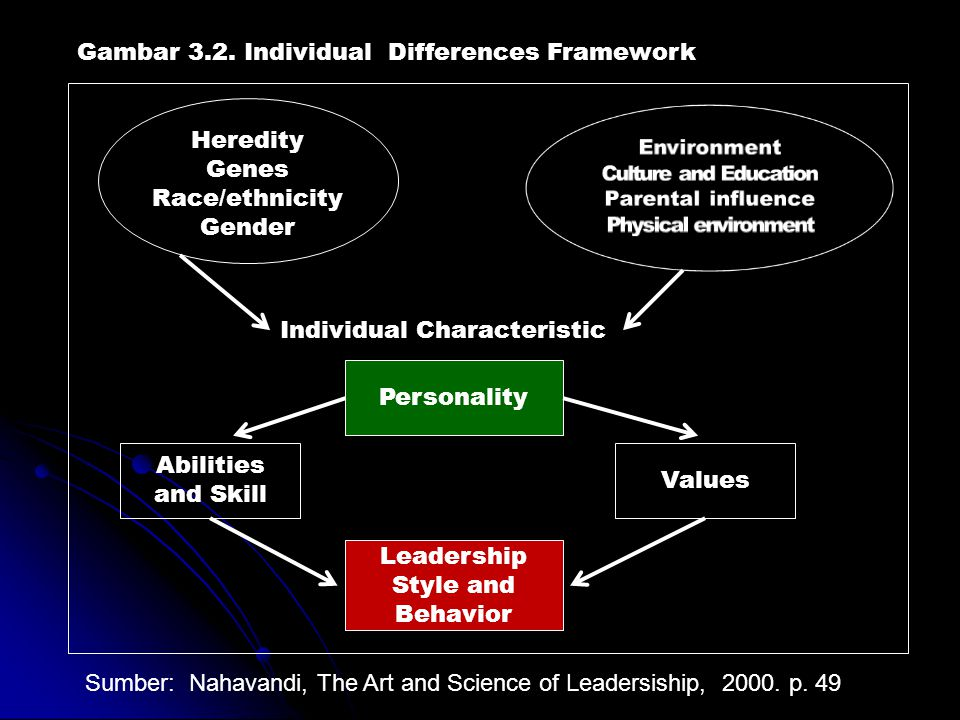 Gambar 3.2. Individual Differences Framework