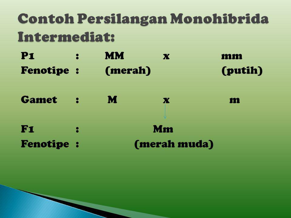 Contoh Persilangan Monohibrida Intermediat:
