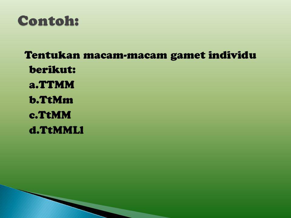Contoh: Tentukan macam-macam gamet individu berikut: a.TTMM b.TtMm c.TtMM d.TtMMLl
