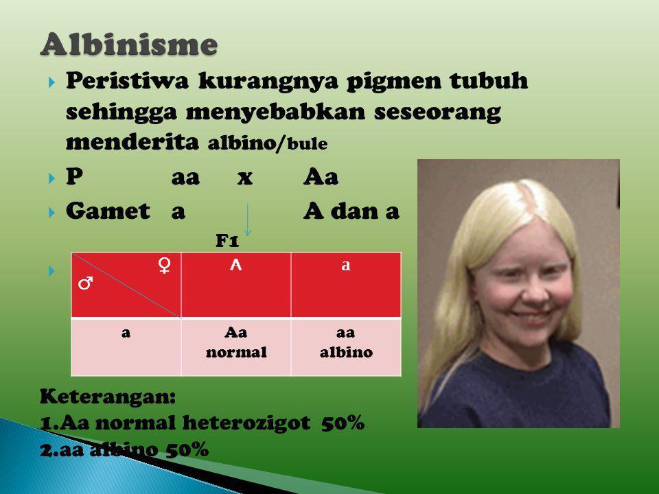 Albinisme Peristiwa kurangnya pigmen tubuh sehingga menyebabkan seseorang menderita albino/bule. P aa x Aa.