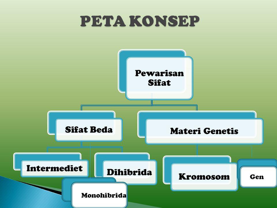 PETA KONSEP Gen Monohibrida Pewarisan Sifat Sifat Beda Intermediet