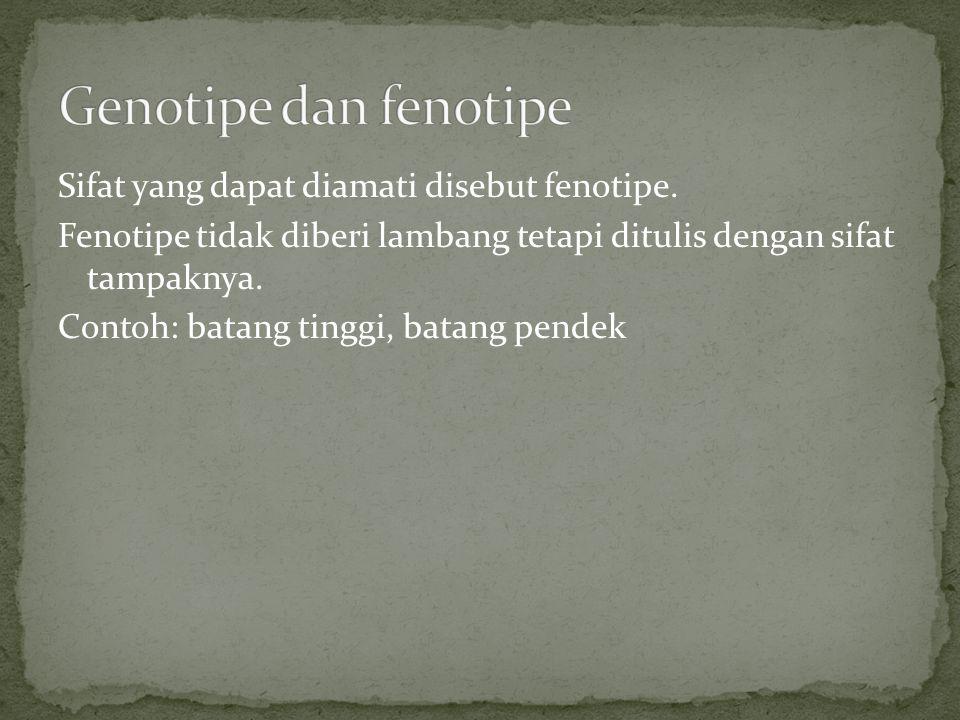 Genotipe dan fenotipe