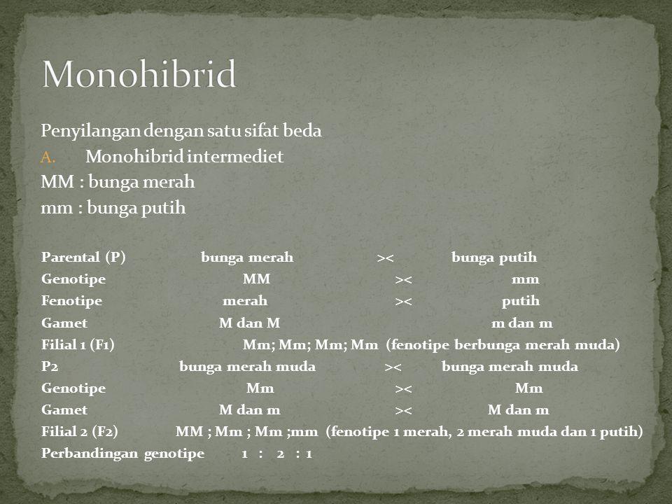 Monohibrid Penyilangan dengan satu sifat beda Monohibrid intermediet