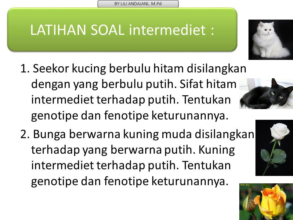 LATIHAN SOAL intermediet :