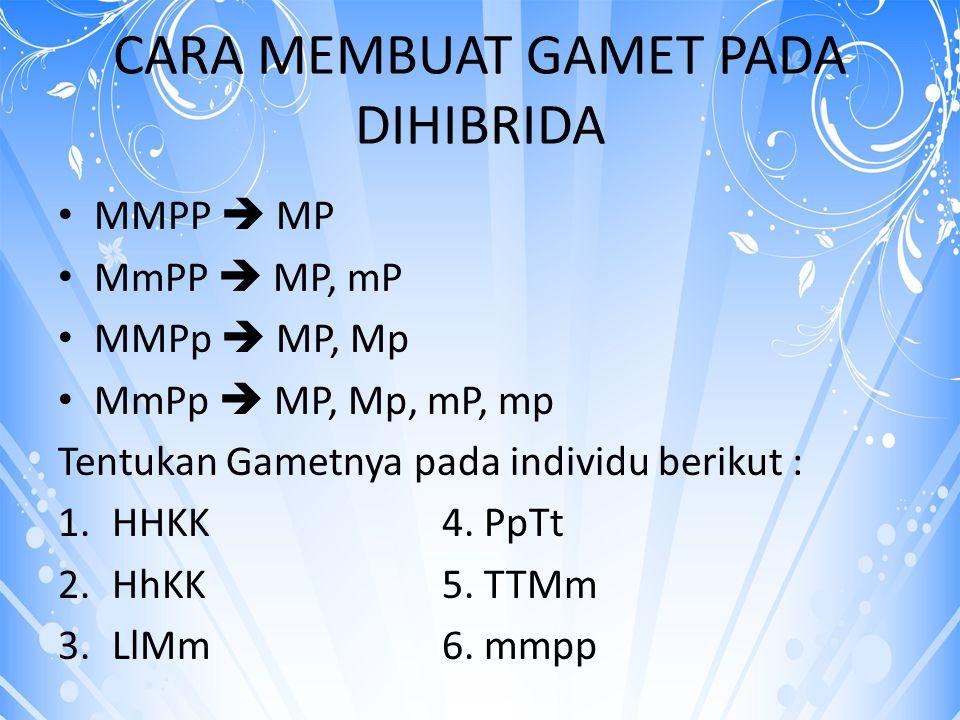 CARA MEMBUAT GAMET PADA DIHIBRIDA