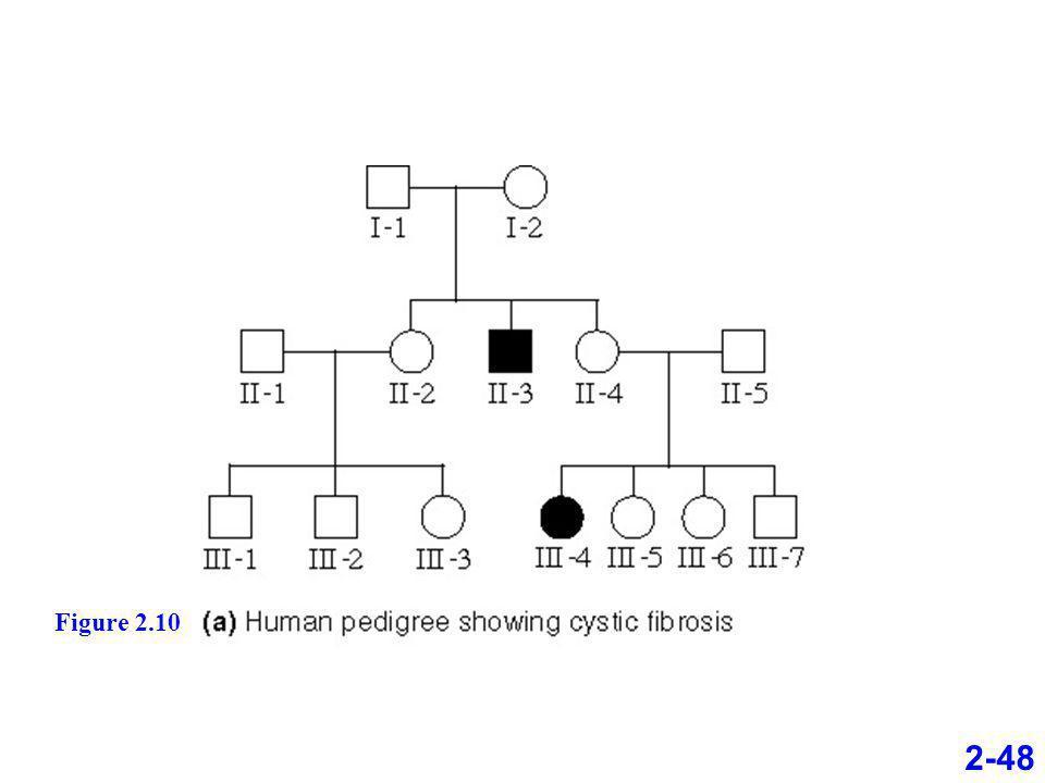 Figure 2.10 2-48