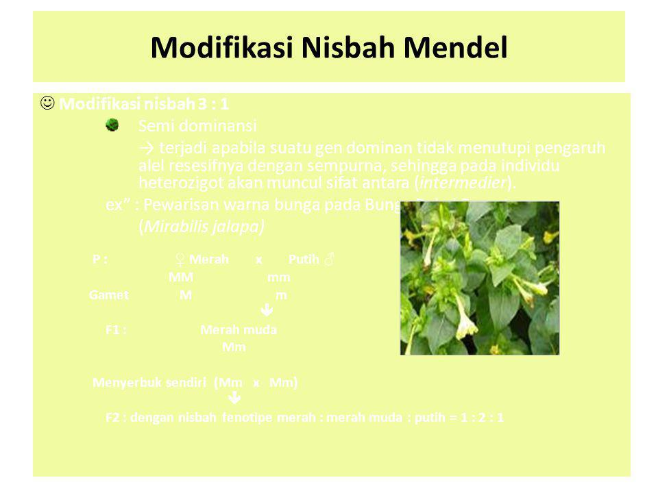 Modifikasi Nisbah Mendel