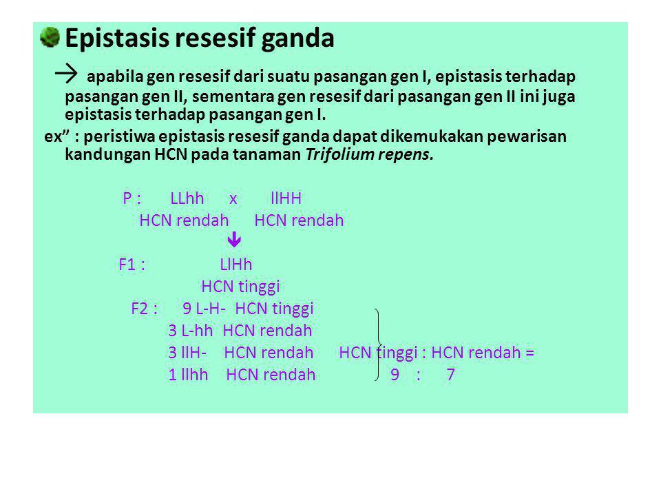 Epistasis resesif ganda