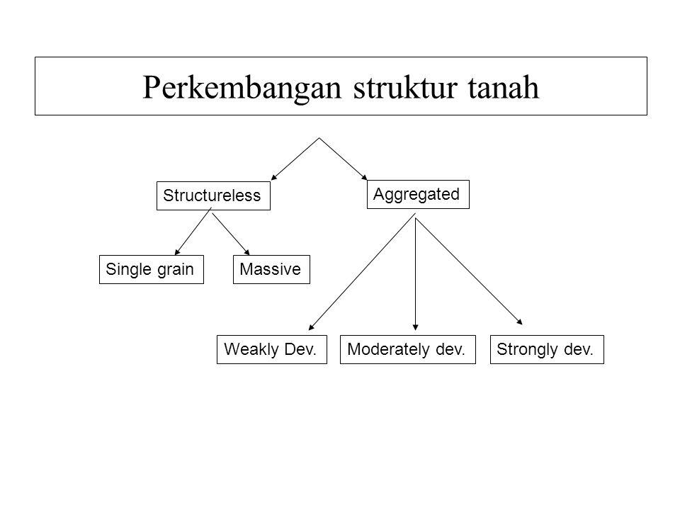 Perkembangan struktur tanah