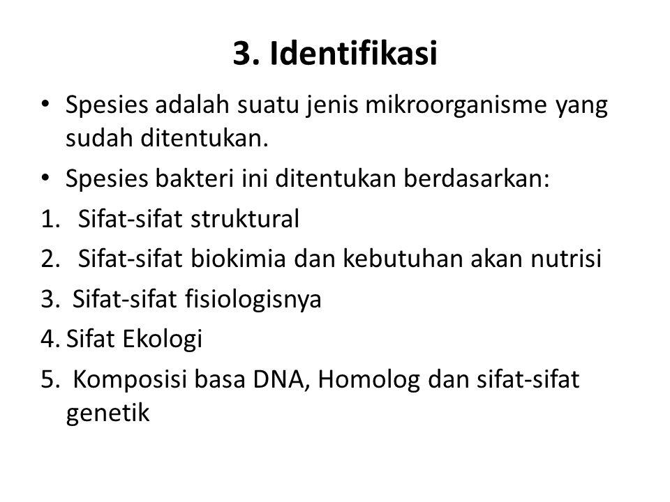 3. Identifikasi Spesies adalah suatu jenis mikroorganisme yang sudah ditentukan. Spesies bakteri ini ditentukan berdasarkan:
