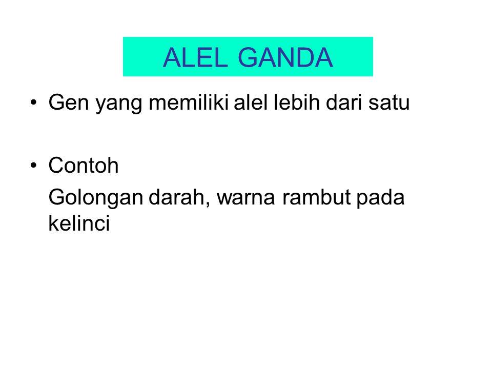 ALEL GANDA Gen yang memiliki alel lebih dari satu Contoh