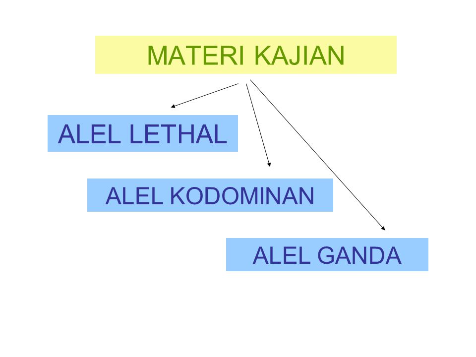 MATERI KAJIAN ALEL LETHAL ALEL KODOMINAN ALEL GANDA