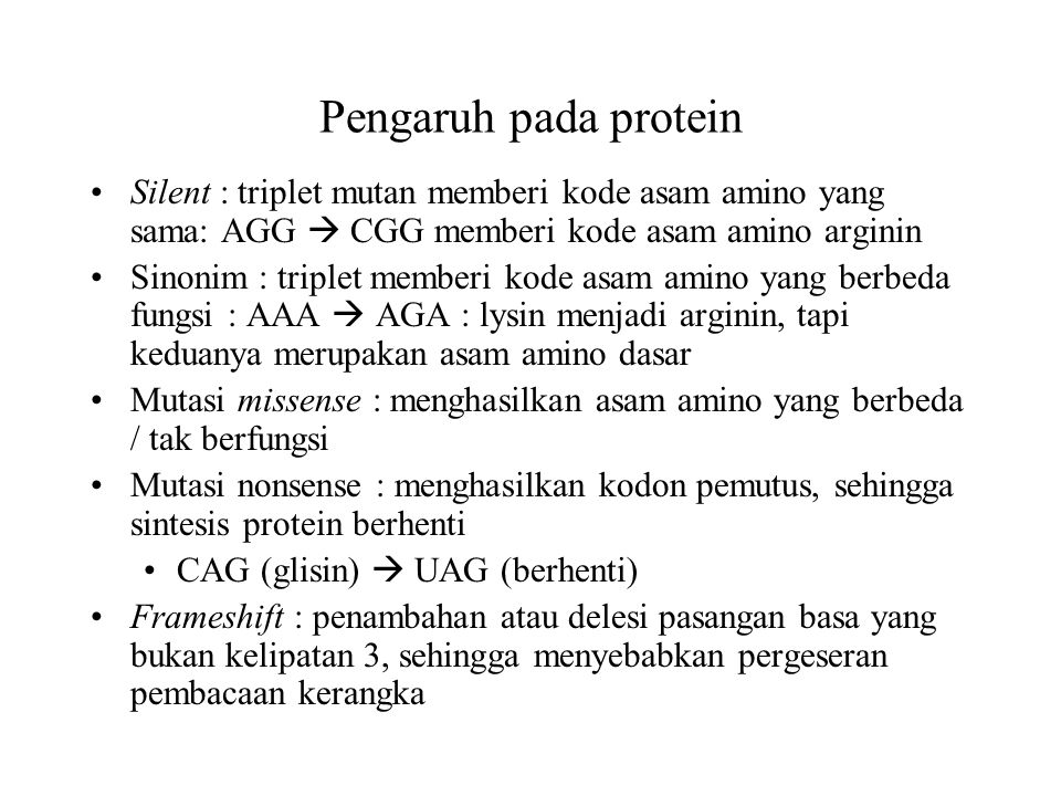 Pengaruh pada protein Silent : triplet mutan memberi kode asam amino yang sama: AGG  CGG memberi kode asam amino arginin.