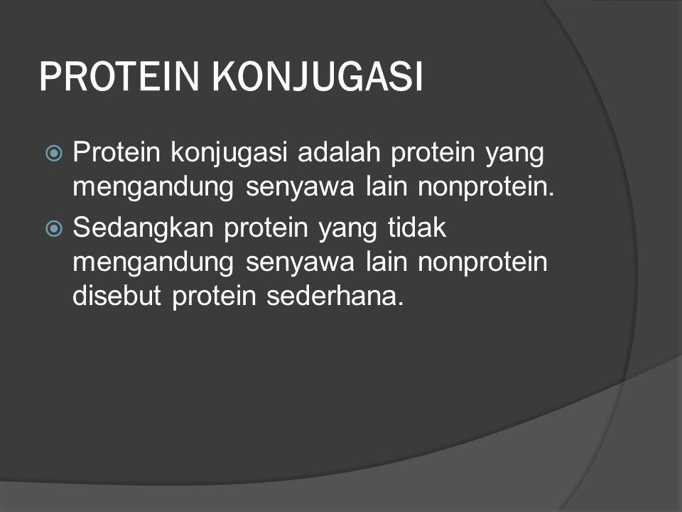 PROTEIN KONJUGASI Protein konjugasi adalah protein yang mengandung senyawa lain nonprotein.