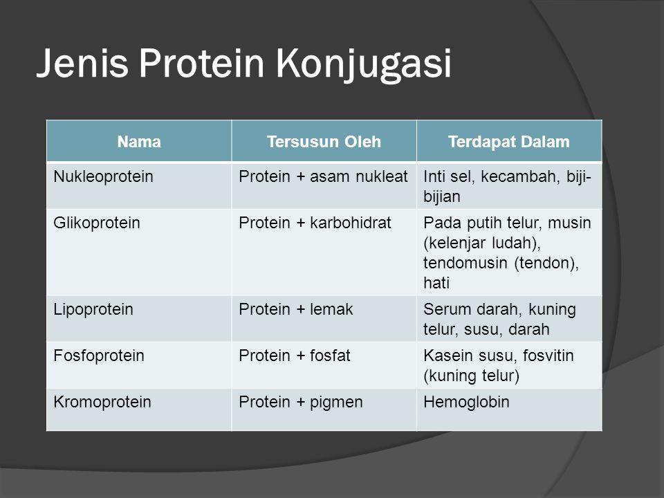 Jenis Protein Konjugasi