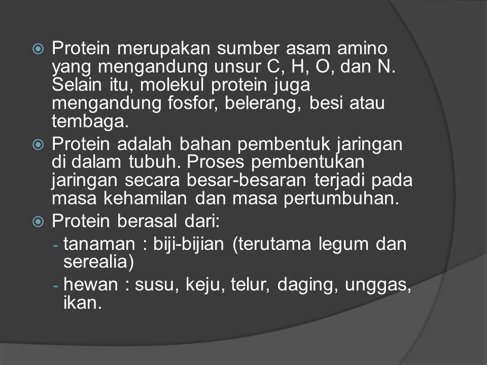Protein merupakan sumber asam amino yang mengandung unsur C, H, O, dan N. Selain itu, molekul protein juga mengandung fosfor, belerang, besi atau tembaga.