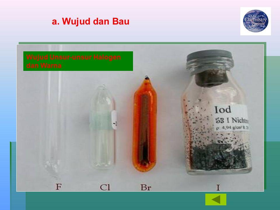a. Wujud dan Bau Wujud Unsur-unsur Halogen dan Warna