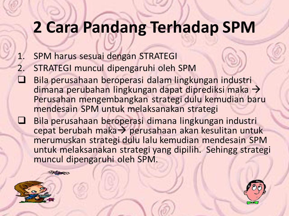 2 Cara Pandang Terhadap SPM