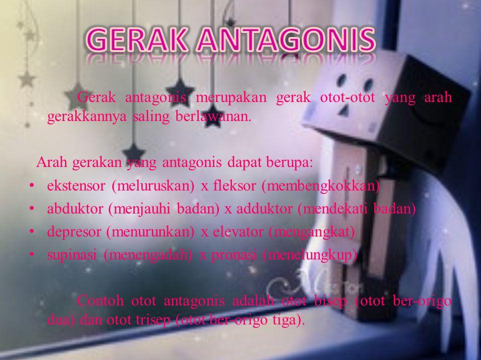 GERAK ANTAGONIS Arah gerakan yang antagonis dapat berupa: