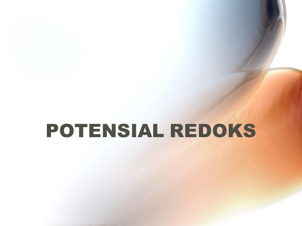POTENSIAL REDOKS
