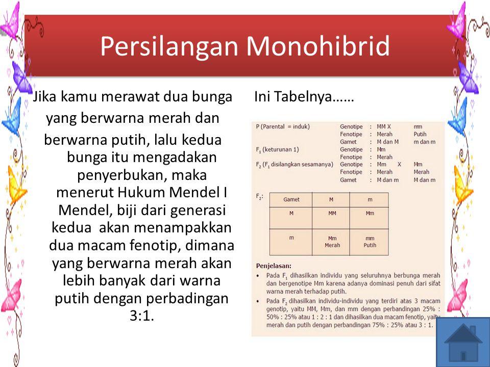 Persilangan Monohibrid