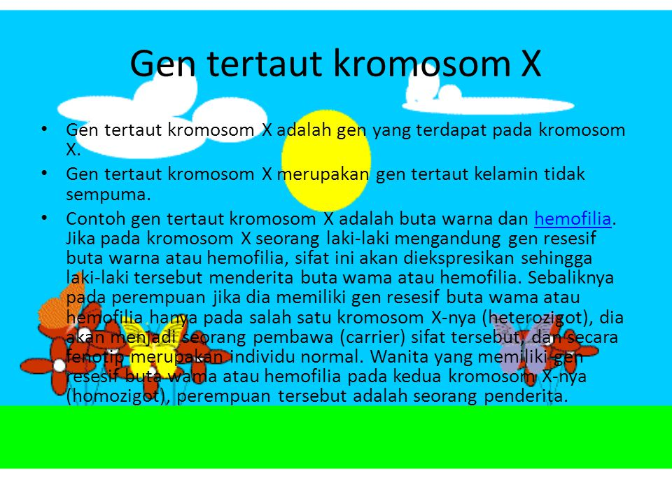 Gen tertaut kromosom X Gen tertaut kromosom X adalah gen yang terdapat pada kromosom X.