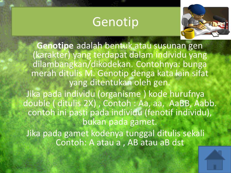 Genotip