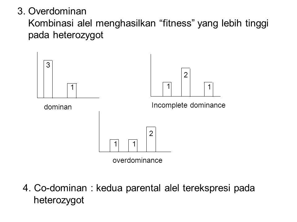Kombinasi alel menghasilkan fitness yang lebih tinggi