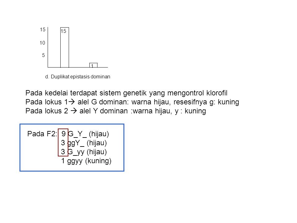 Pada kedelai terdapat sistem genetik yang mengontrol klorofil