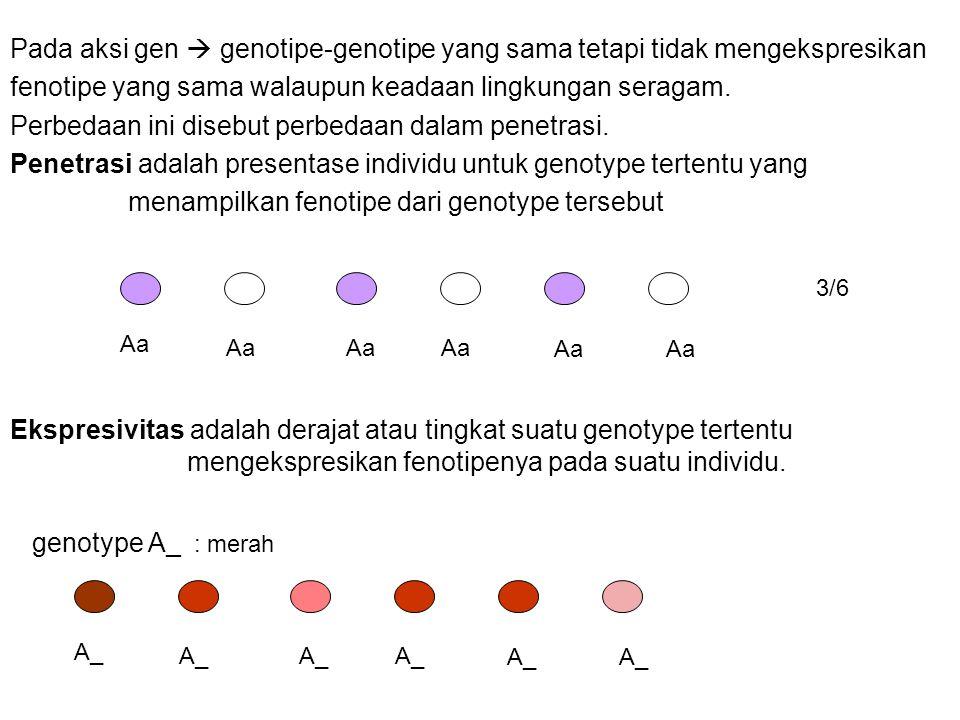fenotipe yang sama walaupun keadaan lingkungan seragam.
