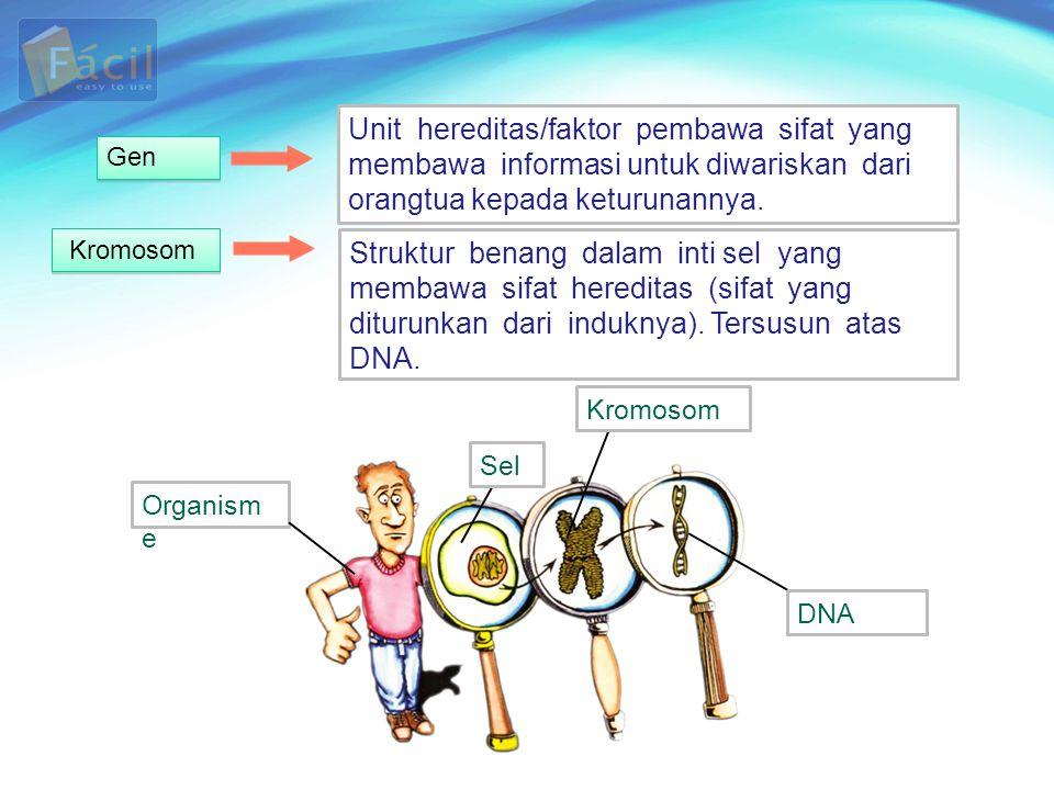 Unit hereditas/faktor pembawa sifat yang membawa informasi untuk diwariskan dari orangtua kepada keturunannya.