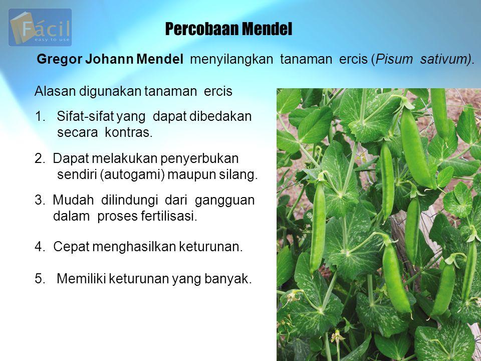 Percobaan Mendel Gregor Johann Mendel menyilangkan tanaman ercis (Pisum sativum). Alasan digunakan tanaman ercis.