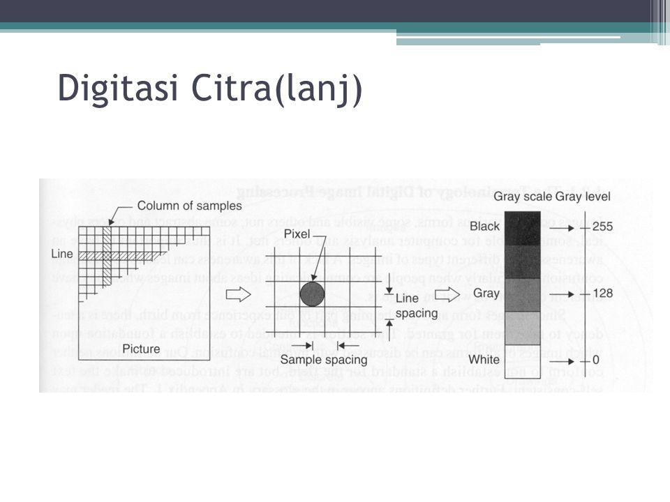 Digitasi Citra(lanj)