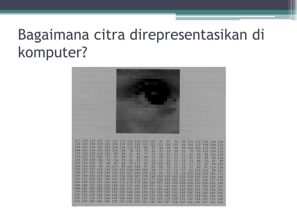 Bagaimana citra direpresentasikan di komputer