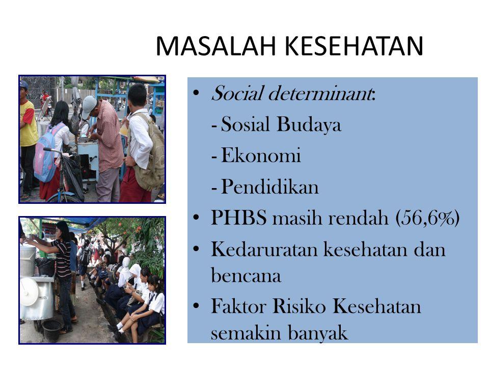 MASALAH KESEHATAN Social determinant: Sosial Budaya Ekonomi Pendidikan