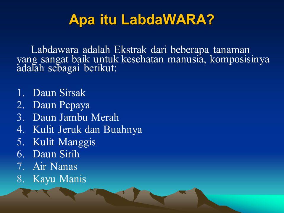 Apa itu LabdaWARA Labdawara adalah Ekstrak dari beberapa tanaman yang sangat baik untuk kesehatan manusia, komposisinya adalah sebagai berikut: