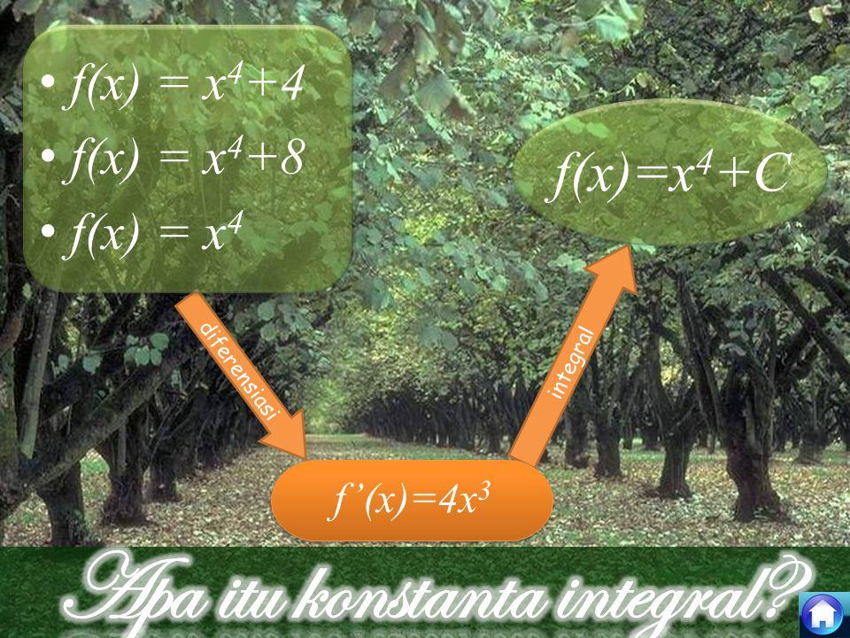 Apa itu konstanta integral