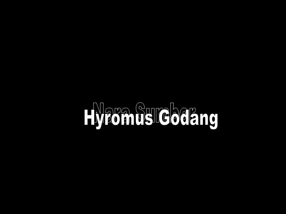Nara Sumber Hyromus Godang