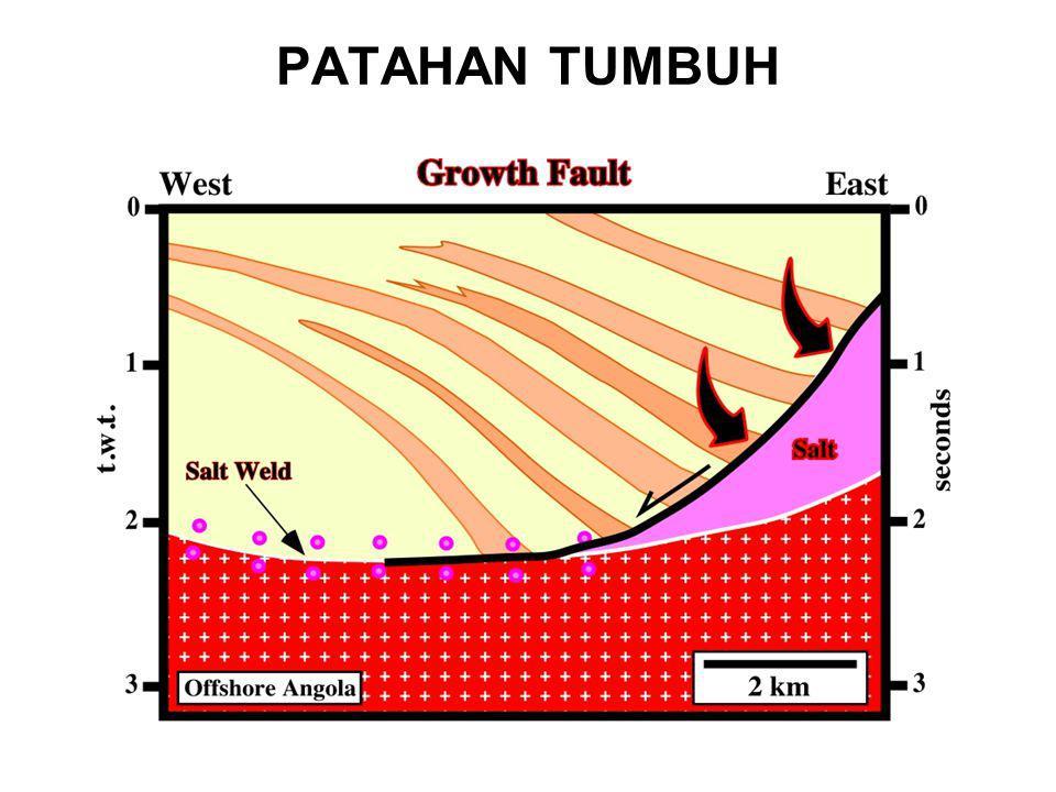 PATAHAN TUMBUH