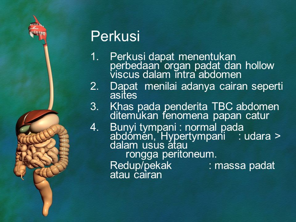 Perkusi Perkusi dapat menentukan perbedaan organ padat dan hollow viscus dalam intra abdomen. Dapat menilai adanya cairan seperti asites.