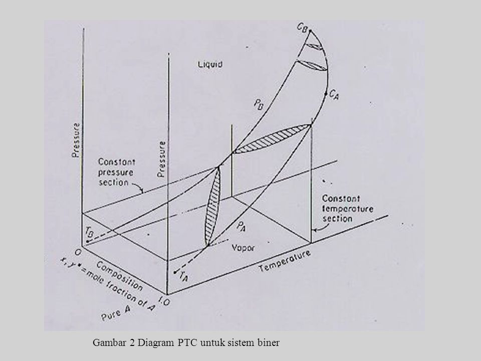 Gambar 2 Diagram PTC untuk sistem biner