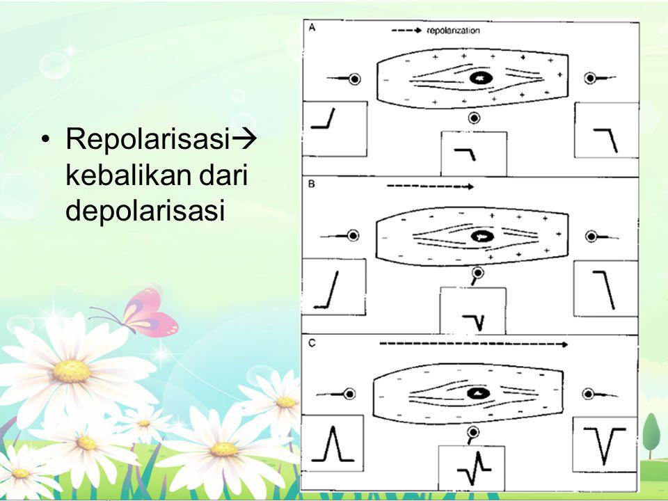 Repolarisasi kebalikan dari depolarisasi