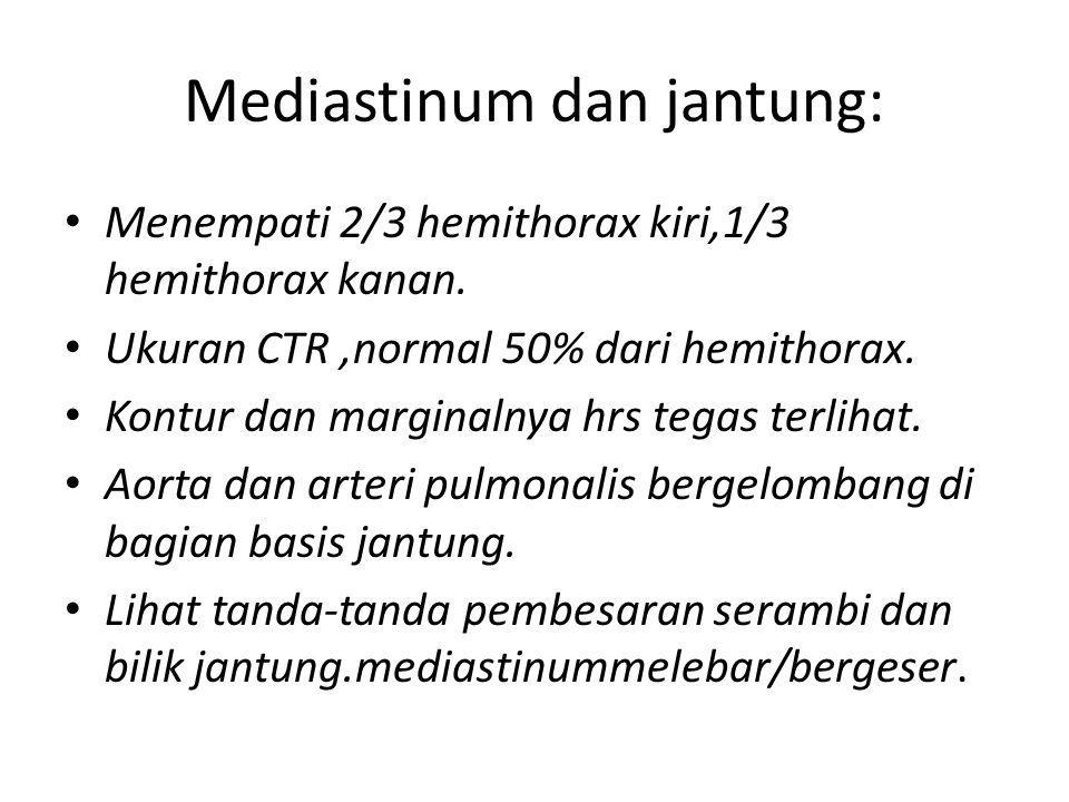 Mediastinum dan jantung: