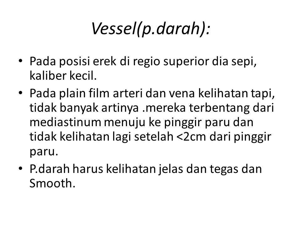Vessel(p.darah): Pada posisi erek di regio superior dia sepi, kaliber kecil.