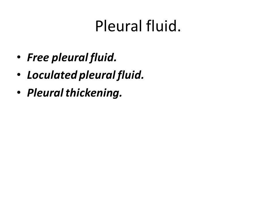 Pleural fluid. Free pleural fluid. Loculated pleural fluid.