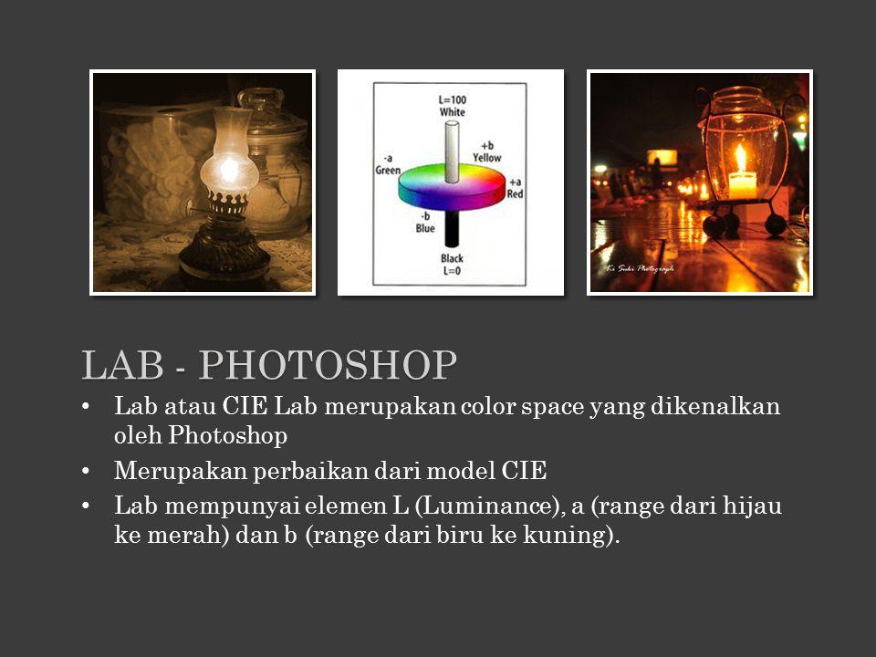Lab - Photoshop Lab atau CIE Lab merupakan color space yang dikenalkan oleh Photoshop. Merupakan perbaikan dari model CIE.