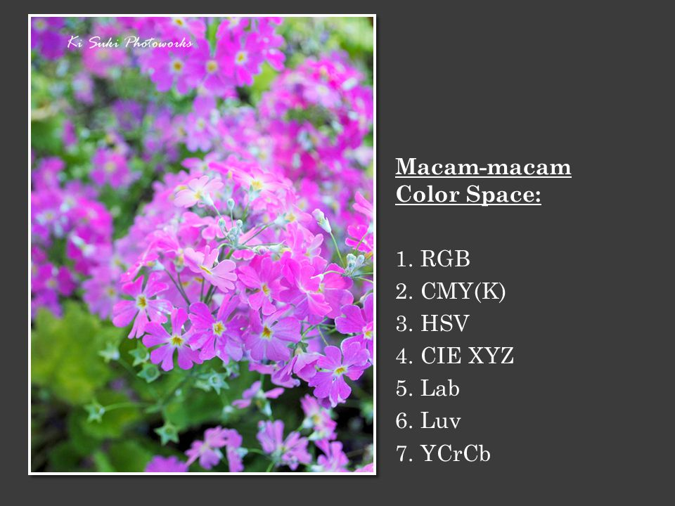 Macam-macam Color Space: