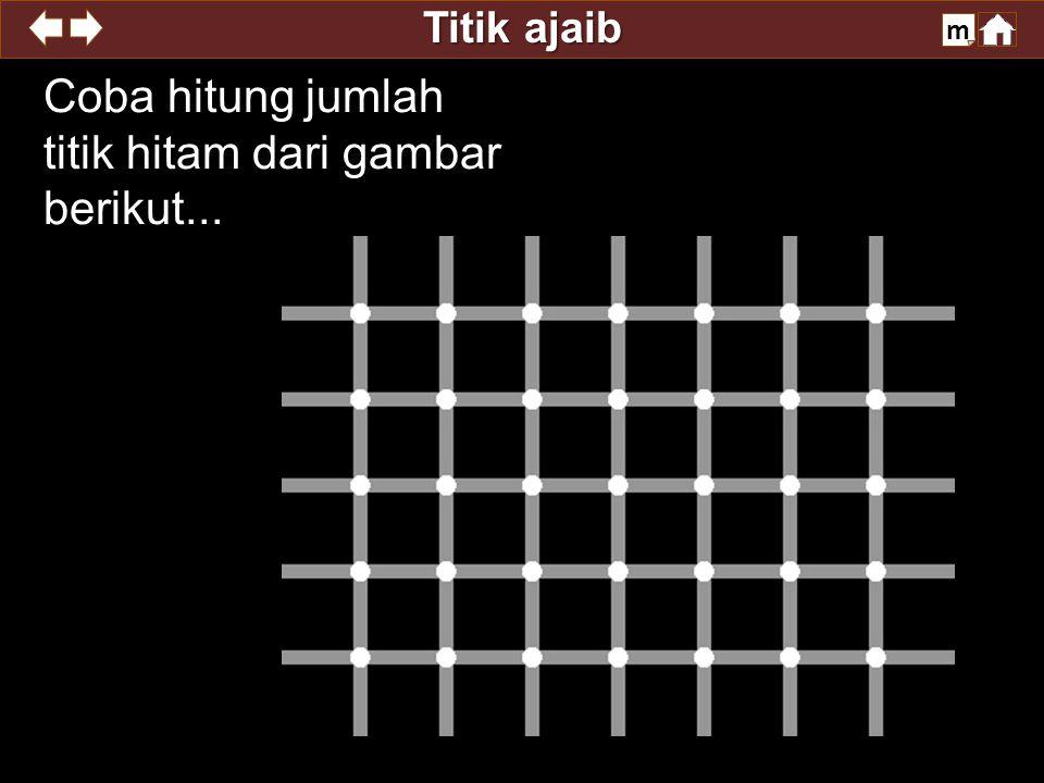 Coba hitung jumlah titik hitam dari gambar berikut...