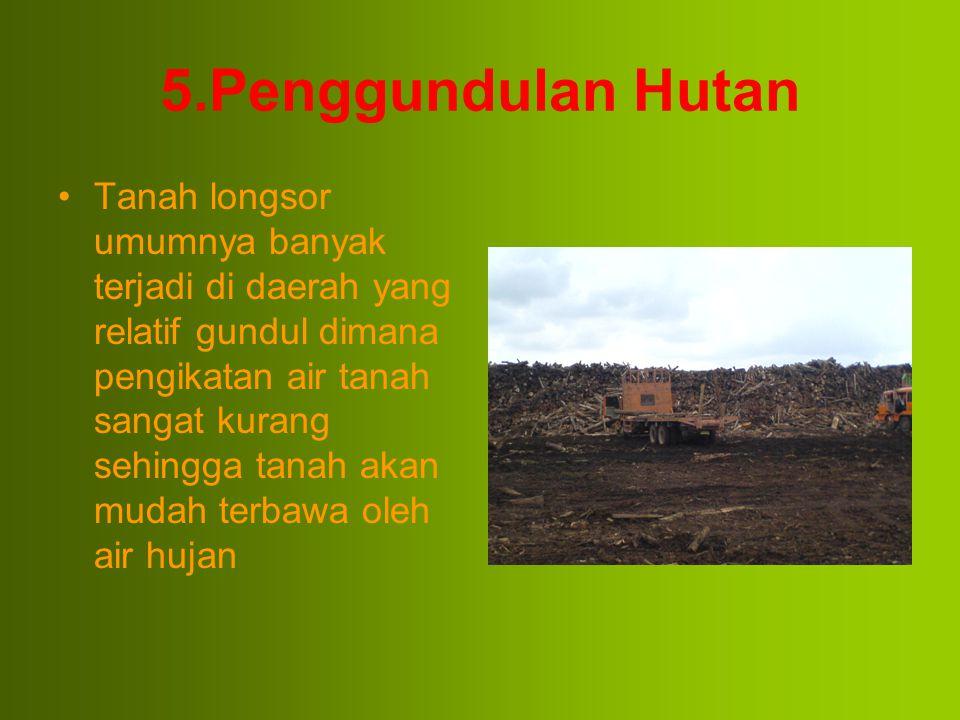 5.Penggundulan Hutan